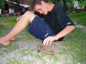 Our new friend Tilo, visiting from Brazil, meeting our friendly Hedgehog