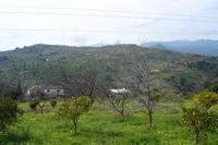 Los Arenalejos