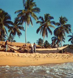 A totally Christmas free holiday in Sri Lanka